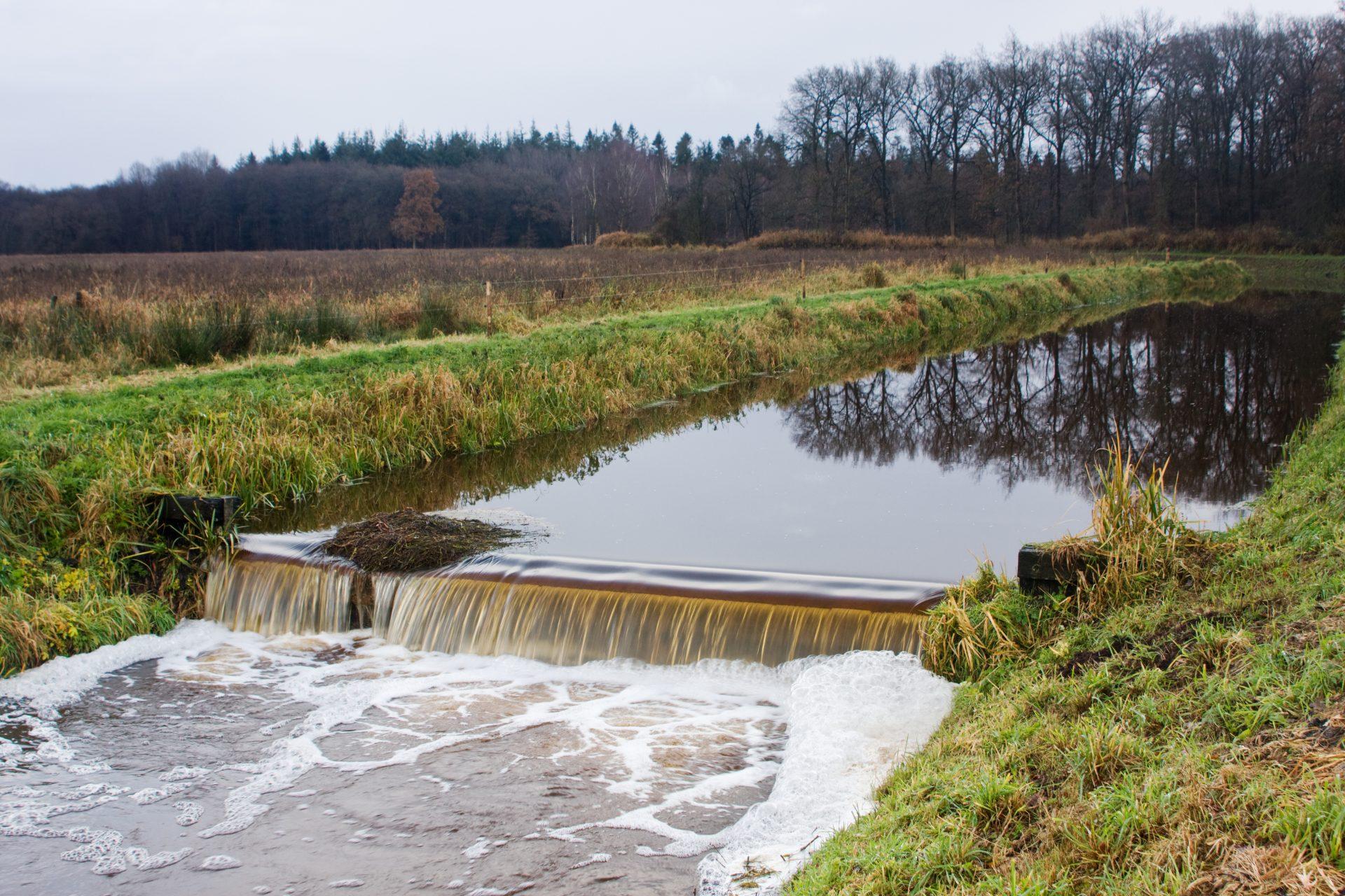 Sportvisserij - adviseur waterbeheer 1