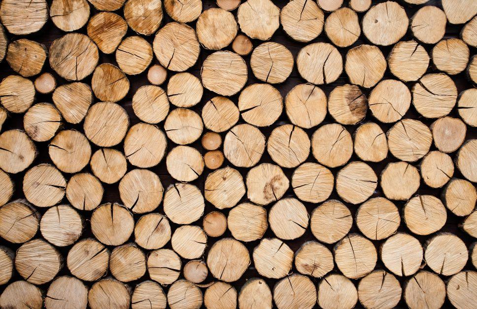 Bos- en natuurbeheer